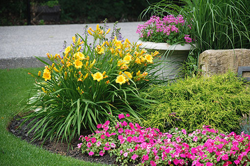 commercial landscaping maintenance