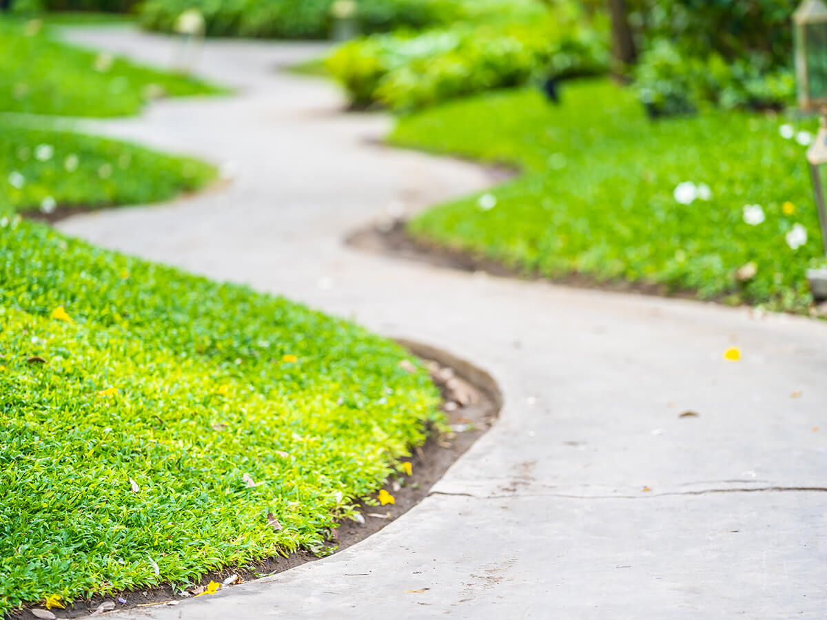 edging and trimming services in Knoxville TN