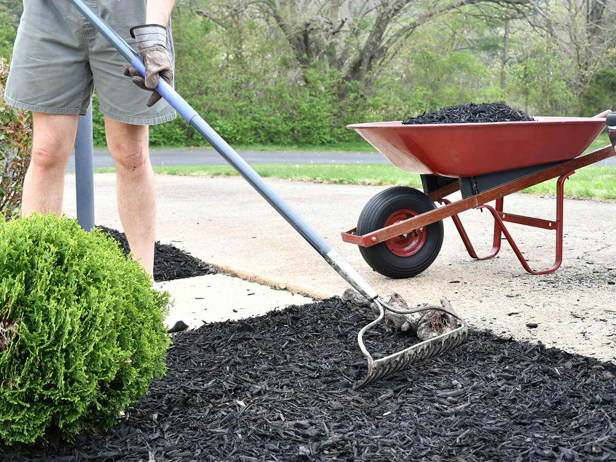 mulching services in KInoxville TN